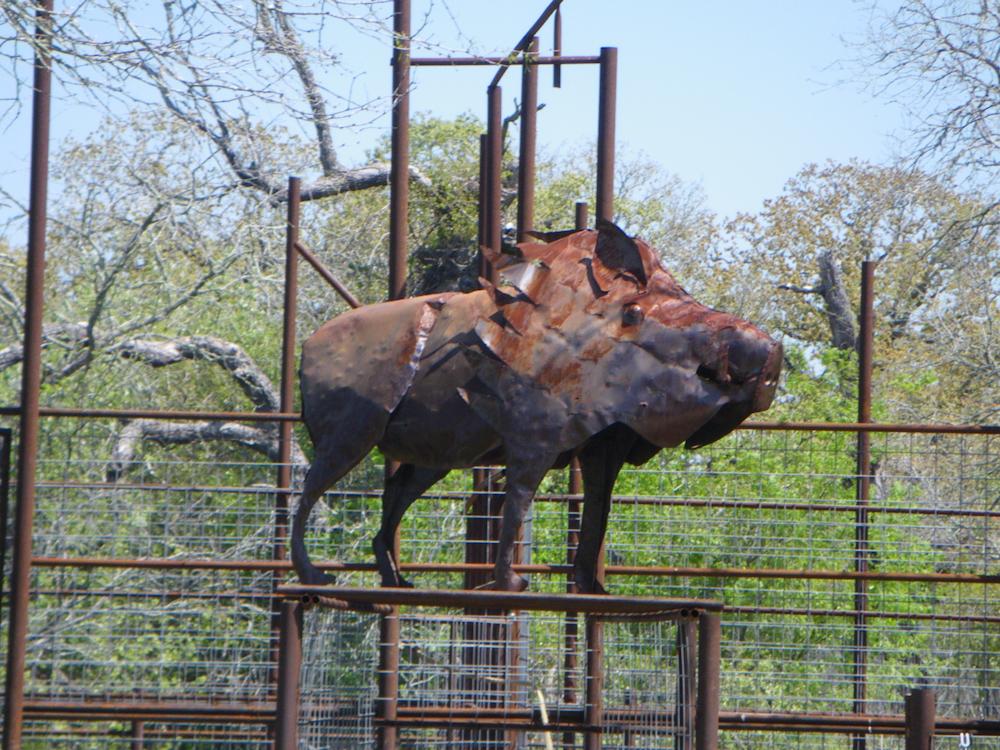 part 4 hog hunting in gonzales tx
