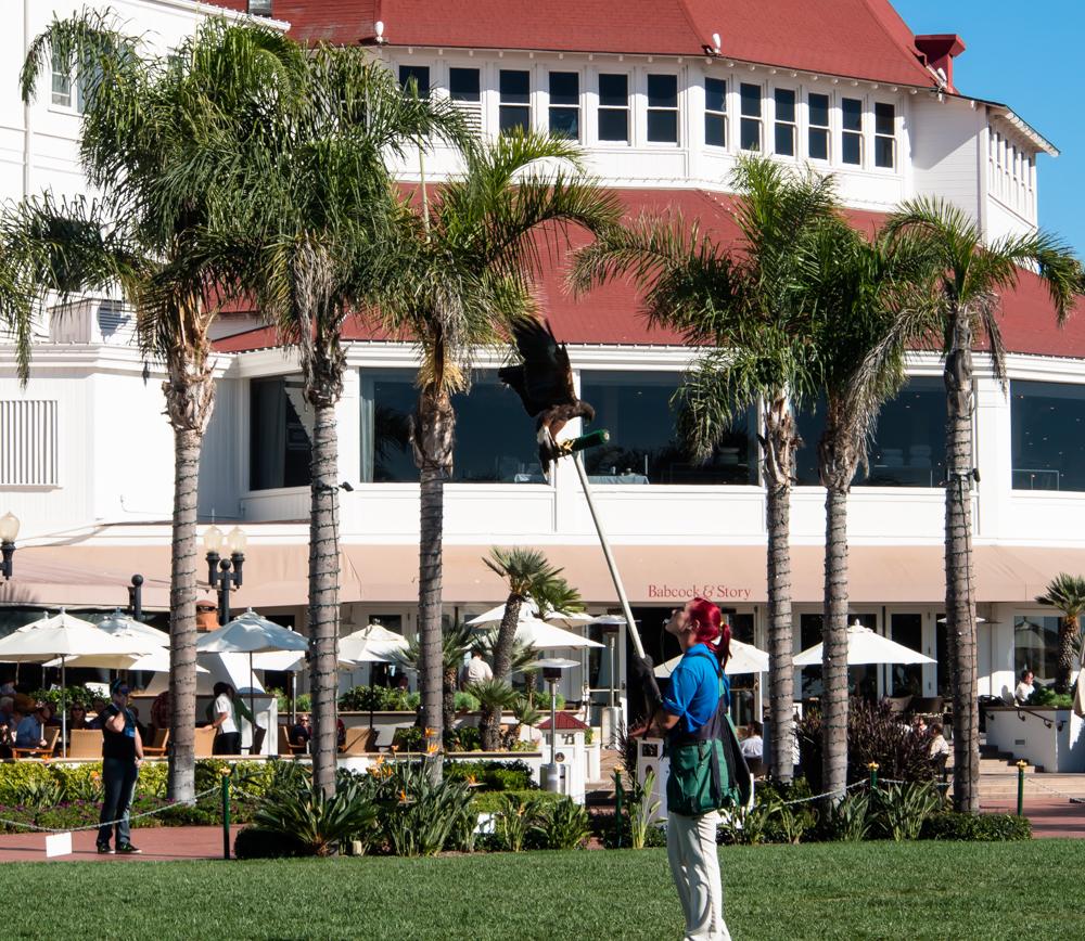 Hotel Del Coronado 20131106